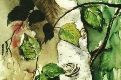 Birke-aquarell