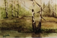 Birken-am-Sumpf-aquarell