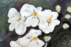 Blumen-weis-acryl