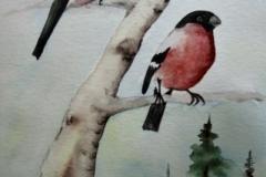 Dompfaffen-Birke-aquarell