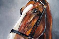 Pferd-Potrait-acryl