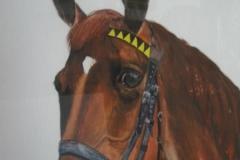 Pferd-Potrait-aquarell