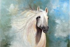 Pferd-weis-acryl