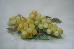 Weintrauben-grün-aquarell