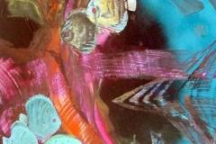 otto-symbiose-Diskus-Fische