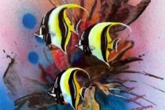 otto-symbiose-Fische